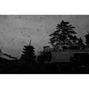 03_nakayama_kuniko.png