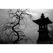 06_nakayama_kuniko.png