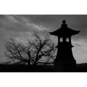 07_nakayama_kuniko.png
